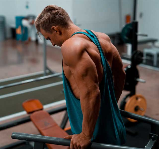 12 Best Triceps Workout For Mass (Sample Workout Plan)