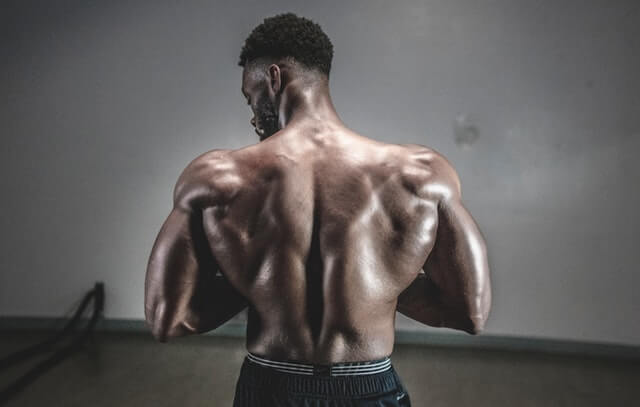 10 Best Back Exercises You should Include (Sample plan)