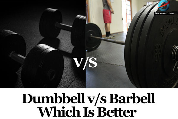 Dumbbell vs Barbell- Which Is Better For You?